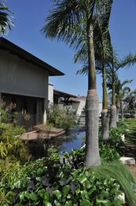 Casa CF La  Hacienda, Santa Ana