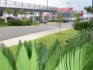 Ciudad Toyota CR