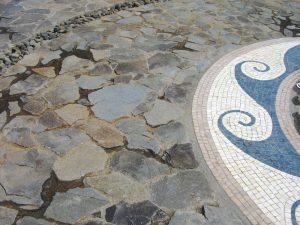 Fuente Las Vistas, Nativa CR